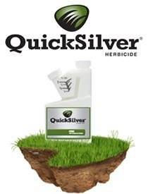 QuickSilver Herbicide Broadleaf Weed and Moss Control