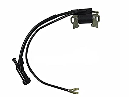 Amazon com : shanmu YONGHONG IGNITION COIL MAGNETO Replacement