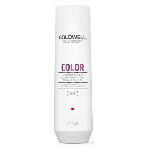 Goldwell Dualsenses Color Brilliance Shampoo 10.1 ()