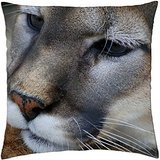 Big wild cat - Throw Pillow Cover Case (18