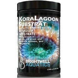 Brightwell Aquatics 12 lb. KoraLagoon Substrat Aragonite Refugium Substrate, 5.4 kg by Deepwater Aquatics Distribution