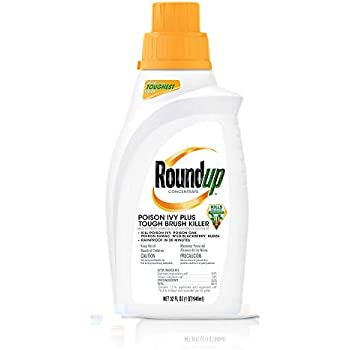 Amazon.com : Roundup Weed and Grass Killer Super ...