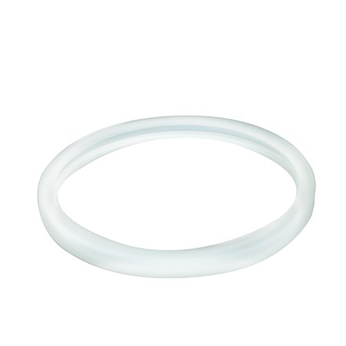 Inground Pool Light Gasket