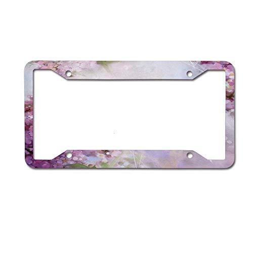 (Newshowlee Metal Tag Frame Decor Decoration for Car, Car Tag - 12