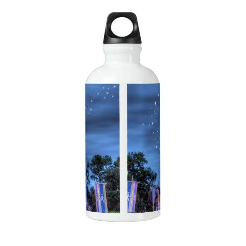 Disney Sport Bottle Outdoor Yoga Camping Hiking castle Steel Bottle for Water Cycling Bottle Travel Flask Stainless Steel Disney Water Bottle 18 Oz