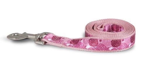 Aspen Pet 11467 Leash for Pets, 1 by 6-Feet, Flower Burst Pink