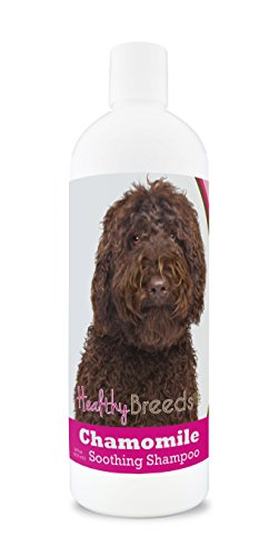 Healthy Breeds Chamomile Dog Shampoo & Conditioner with Oatmeal & Aloe for Labradoodle, Dark Brown - OVER 200 BREEDS - 8 oz - Gentle for Dry Itchy Skin - Safe with Flea and Tick Topicals