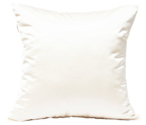 TangDepot Durable Faux Silk Solid Pillow Shams, Square Decorative Pillow Covers, Throw Pillow Covers, Indoor/Outdoor Cushion Covers Pillows Shells - (18