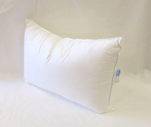 Continental Bedding 100% Premium White Goose Down Luxury Pil