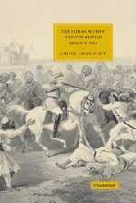 The Indian Mutiny and the British Imagination (Cambridge Studies in Nineteenth-Century Literature and Culture)