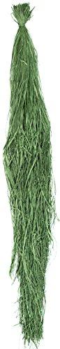 SuperMoss (30229) 1lb Raffia Hank, Grass Green, (Green Raffia Grass)