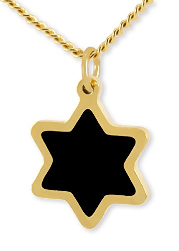 (Gold Plated Small Star of David Pendant - Black Enamel Charm Necklace, 17.5