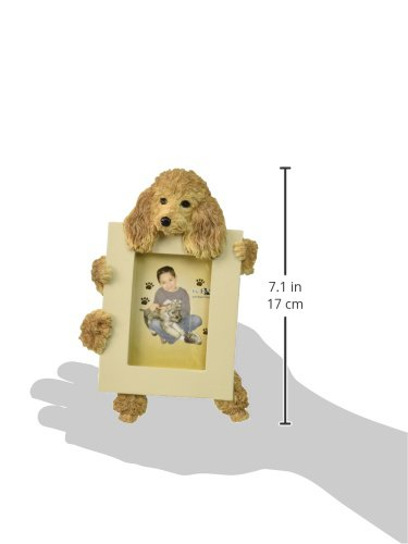 Apricot-Poodle-Picture-Frame-Holds-Your-Favorite-25-by-35-Inch-Photo-Hand-Painted-Realistic-Looking-Poodle-Stands-6-Inches-Tall-Holding-Beautifully-Crafted-Frame-Unique-and-Special-Poodle-Gifts-for-Po