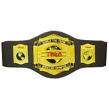 TNA Belt Tag Team