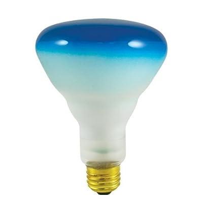 Bulbrite 75BR30B 75W BR30 Reflector 120V Wide Flood Light, Blue