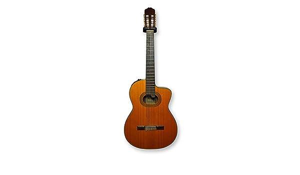 Takamine E-30 - Guitarra eléctrica (+ estuche): Amazon.es: Instrumentos musicales