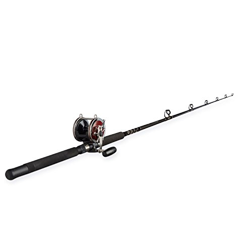 (Penn Special Senator 91332 Fishing Rod and Reel Combo, 6.5 Feet)