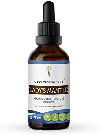 Lady s Mantle Alcohol-Free Liquid Extract, Organic Lady s Mantle Alchemilla vulgaris Dried Herb Tincture Supplement 2 FL OZ