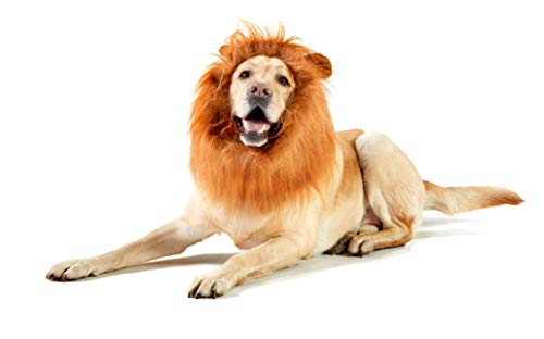4LegsFriend Dog Lion Mane: Funny Wig Plus Tail for Medium to Large Dogs, Adjustable One-Size Canine Costume for Holidays, Halloween, Purim or Cosplay Parties + Bonus -