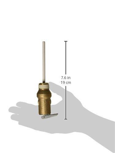 Rheem sp12574 Temperatura y presión válvula de alivio: Amazon.es: Bricolaje y herramientas