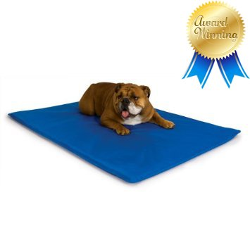 K H Cool Bed III Cooling Dog Bed Pad Mat Blue, Medium – 22 x 32 x 1.5
