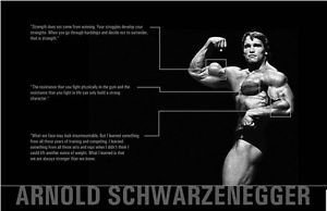 Bingirl Motivational Bodybuilding Gym Wall Posters Picture Arnold Schwarzenegger 24x36