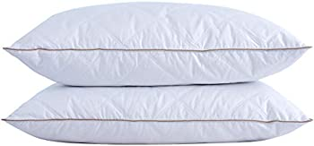 2-Pack Puredown Natural Goose Down Feather Pillows