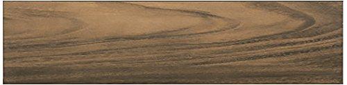 - Dal-Tile 6361PF-AV07 Acacia Valley Tile,, 6