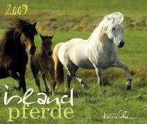 Isländer 2009: Island Pferde