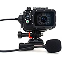 AEE Technology T45 Professional Extended Microphone for AEE Action Camera & Waterproof Housing (Black)