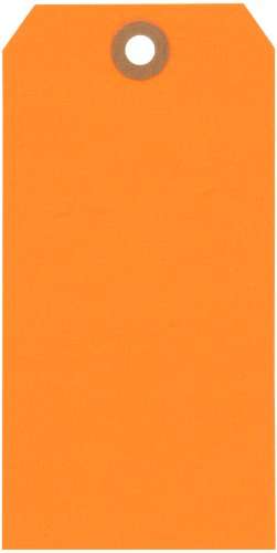 Aviditi Shipping Blank Tag, 13 Point Cardstock, 5-1/4