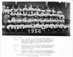 1956 Brooklyn Dodgers 8x10 Team Photo