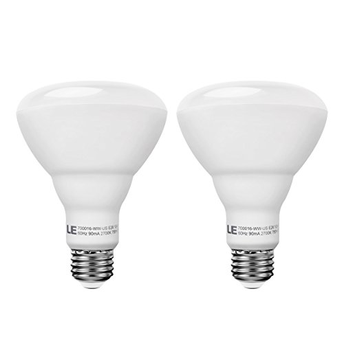Incandescent Equivalent Dimmable Bulbs Recessed