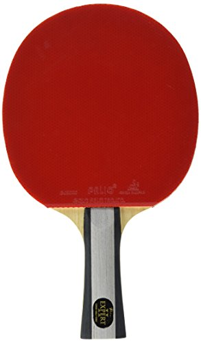 Palio Expert 2 Table Tennis Bat & Case
