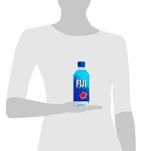 FIJI Natural Artesian Water, 16.9 Fl Oz (Pack Of 24