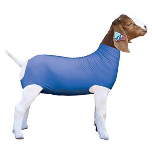 Show Pro Blue Spandex Goat Tube for Show Goats - Show Livestock Supplies: Goat Covers & Blankets (Large)