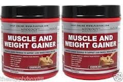 Muscle & Weight Gainer Chocolate - 1.5 lbs Powder - 2 Pack Made in USA for Myology Muscle Science