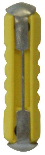 Cora 000120684 Fusibili Tradizionali 5A, Scatola 100 pezzi Cora S.p.A