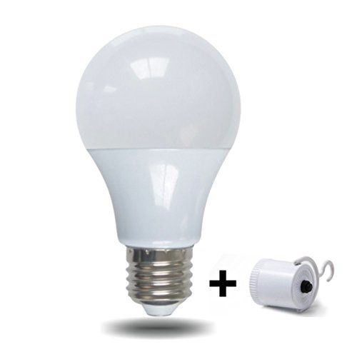 Build A Led Light Bulb