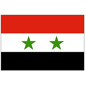 Amazoncom Syria Flag Ft X Ft Polyester Outdoor Flags - Syria flag