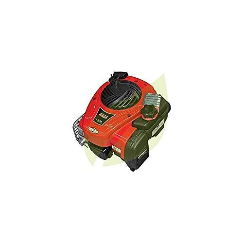 Motor Briggs & Stratton 550E Series OHV 148 cc: Amazon.es ...