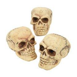 SET of 6 Foam Filled Skulls ~ Halloween Home Decor ~ Tabletop ~ Indoor ~ Outdoor (Foam Skull)