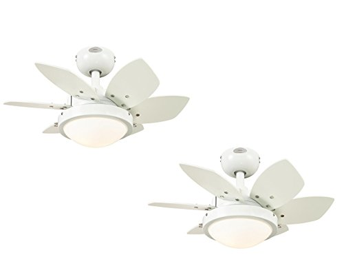 Ciata Lighting Quince 24-Inch Reversible Six-Blade Indoor Ceiling Fan White Finish with Two-Light Opal Frosted Glass