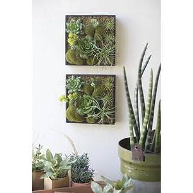 Wall Hanging Artificial Succulents,Set 2