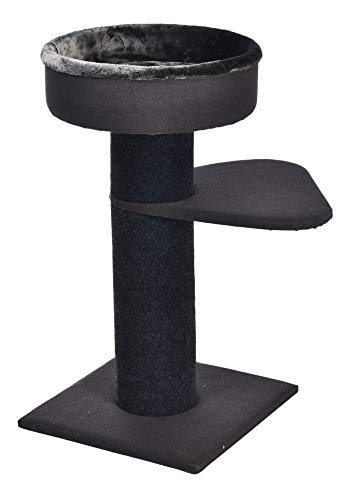 AmazonBasics Two Tier Cat Condo Tree Tower With Premium Hard-Side Bedding – 19 x 19 x 34 Inches, Black