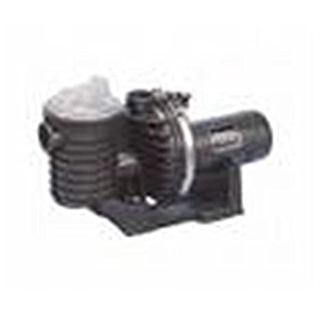 Buy Pentair MPRA6F-206L Dynapro Pump 1 5 Online at Low Prices in
