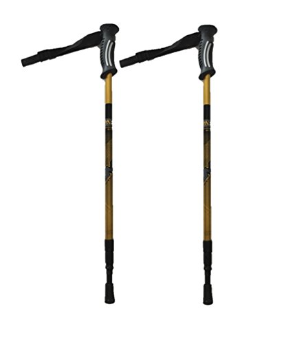 TREK PRO Summer/Winter Hiking Poles by Park Ridge Outfitters With CampingForFoodies Desert Hiking Tips And Techniques For Beginners To Have Confidence With The Proper Gear, Boots, Clothing, First Aid And Hiking Essentials