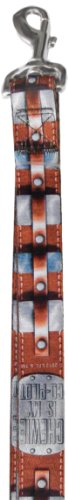 Platinum Pets Star Wars 3/4-Inch by 6-Feet Nylon Leash, Chewbacca Design, My Pet Supplies