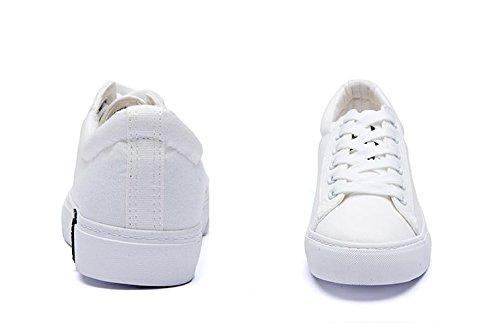 Zapatos Planos De La Lona De Las Señoras,Deportes De Uso Múltiple Y Zapatos De Ocio,Zapatos De Corte Bajo A