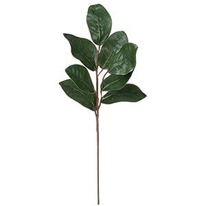 Magnolia Leaf Spray 24″ Height